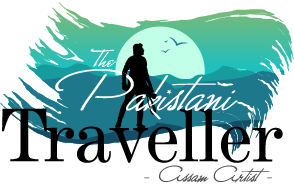 The Pakistani Traveller assam artist logo
